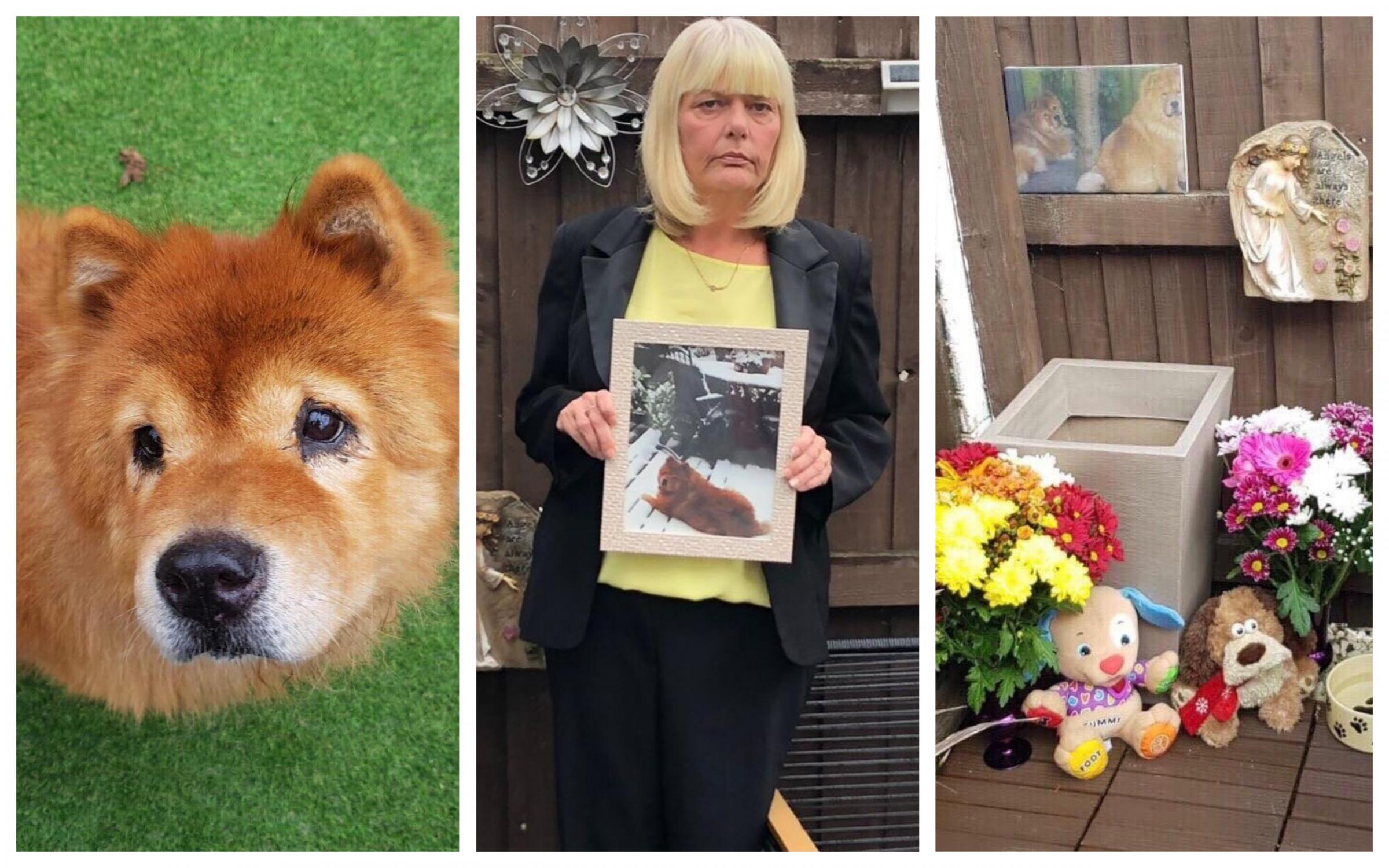 Couple devastated after Chester vet's mistakenly sends beloved dog Fluffy for communal cremation