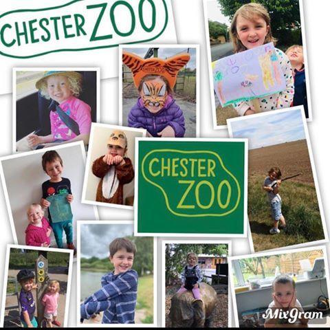 The youngsters at Upton Heath C of E Primary School are going to walk each day to raise as much money as possible for Chester Zoo.