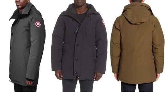 Chester and District Standard: Credit: Canada Goose