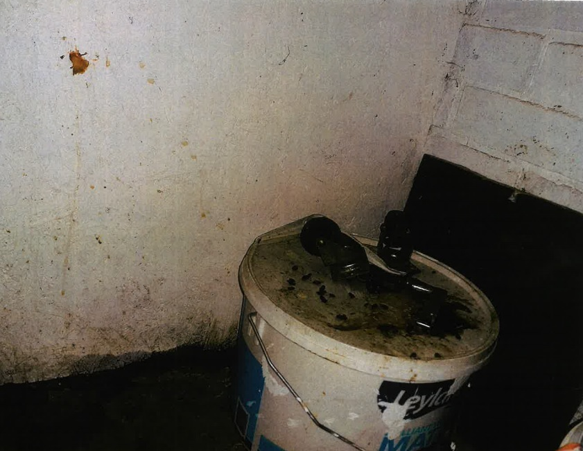 Rat droppings were found throughout the rear of the premises.