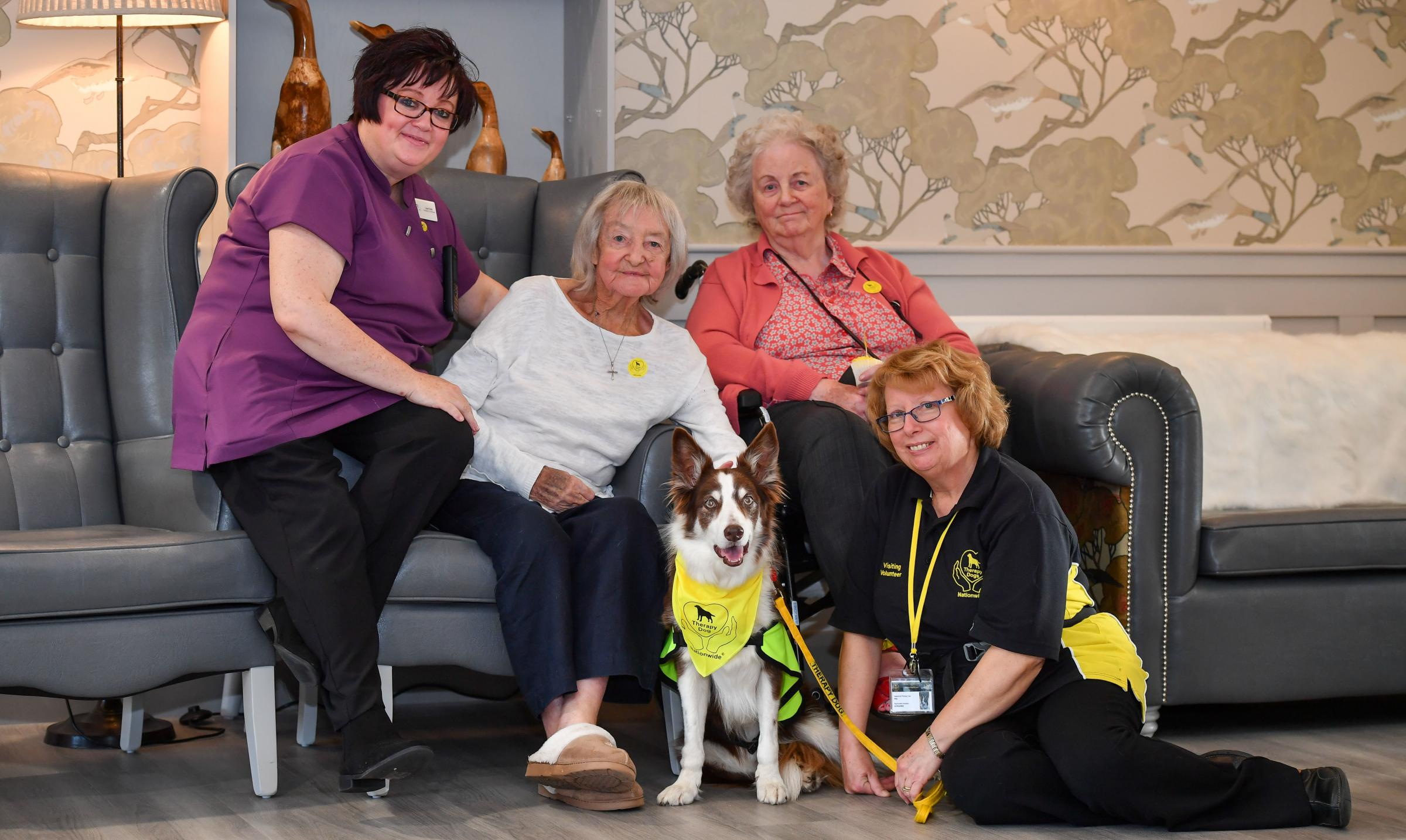 Chester: Therapy dog helps Grosvenor Manor care home residents to speak French!