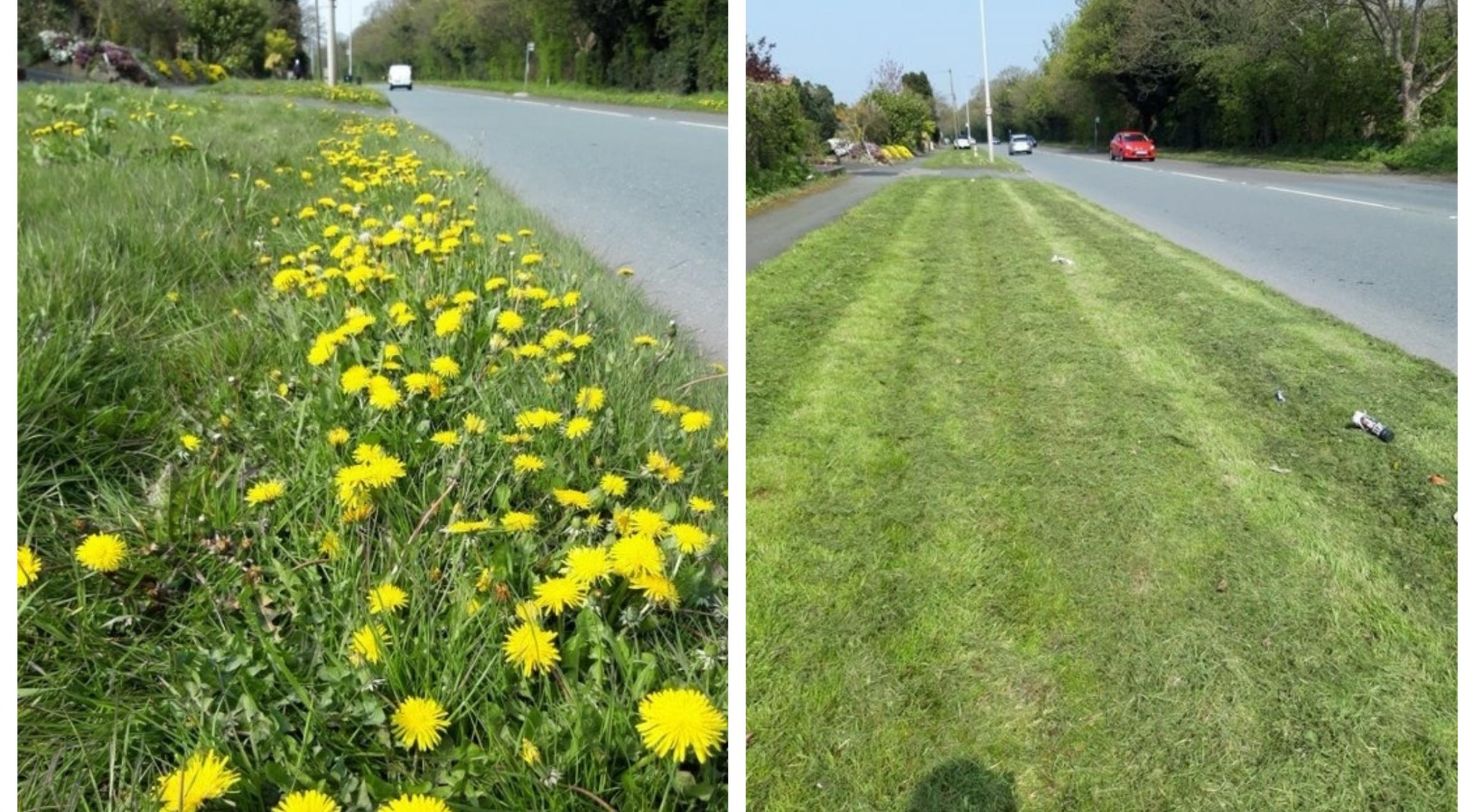 Before and after pictures of the verge on Parkgate Road. Pictures by Andy Scargill.