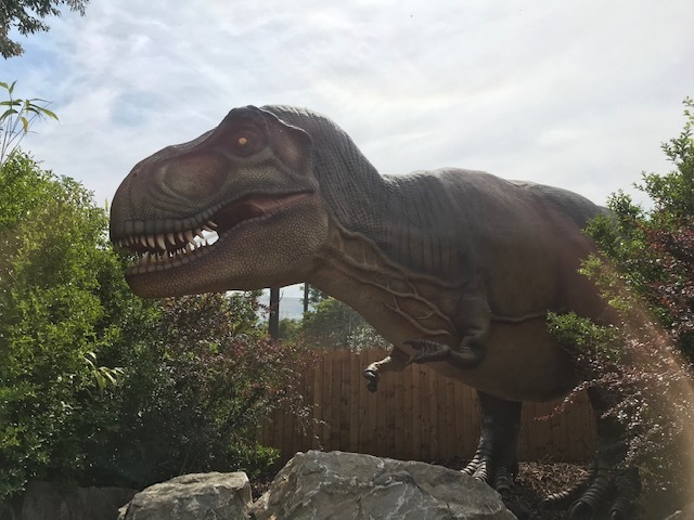 Roarsome: Our review of the new animatronic Predators exhibition at Chester Zoo